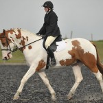 Dressage-Photo-from-High-Cross-Equestrian-Centre