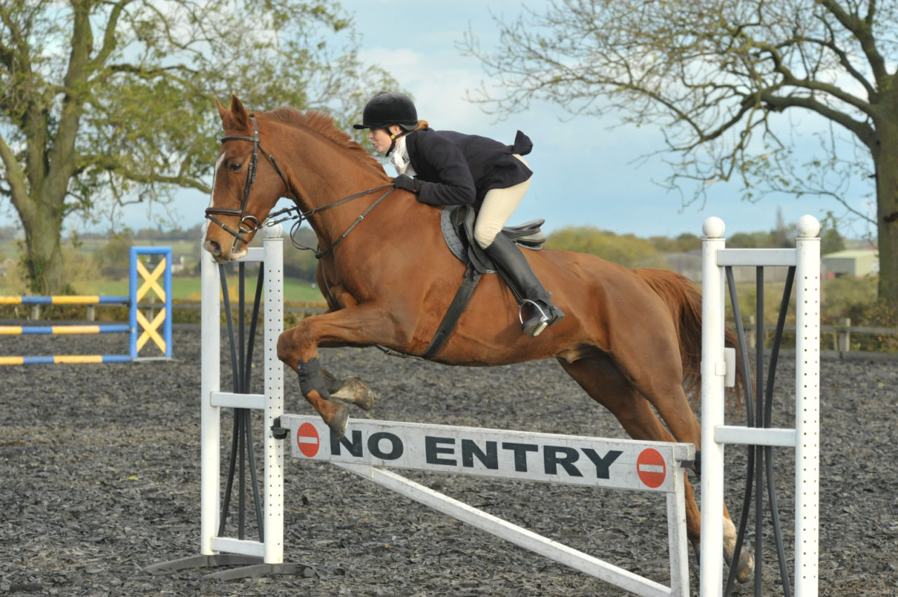 Midlands Show jumping photography