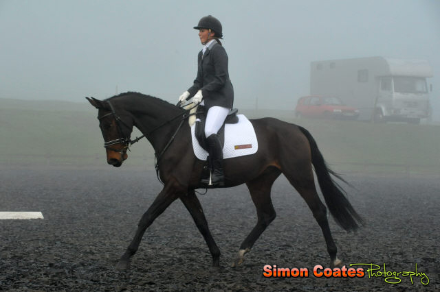 Dressage in the fog