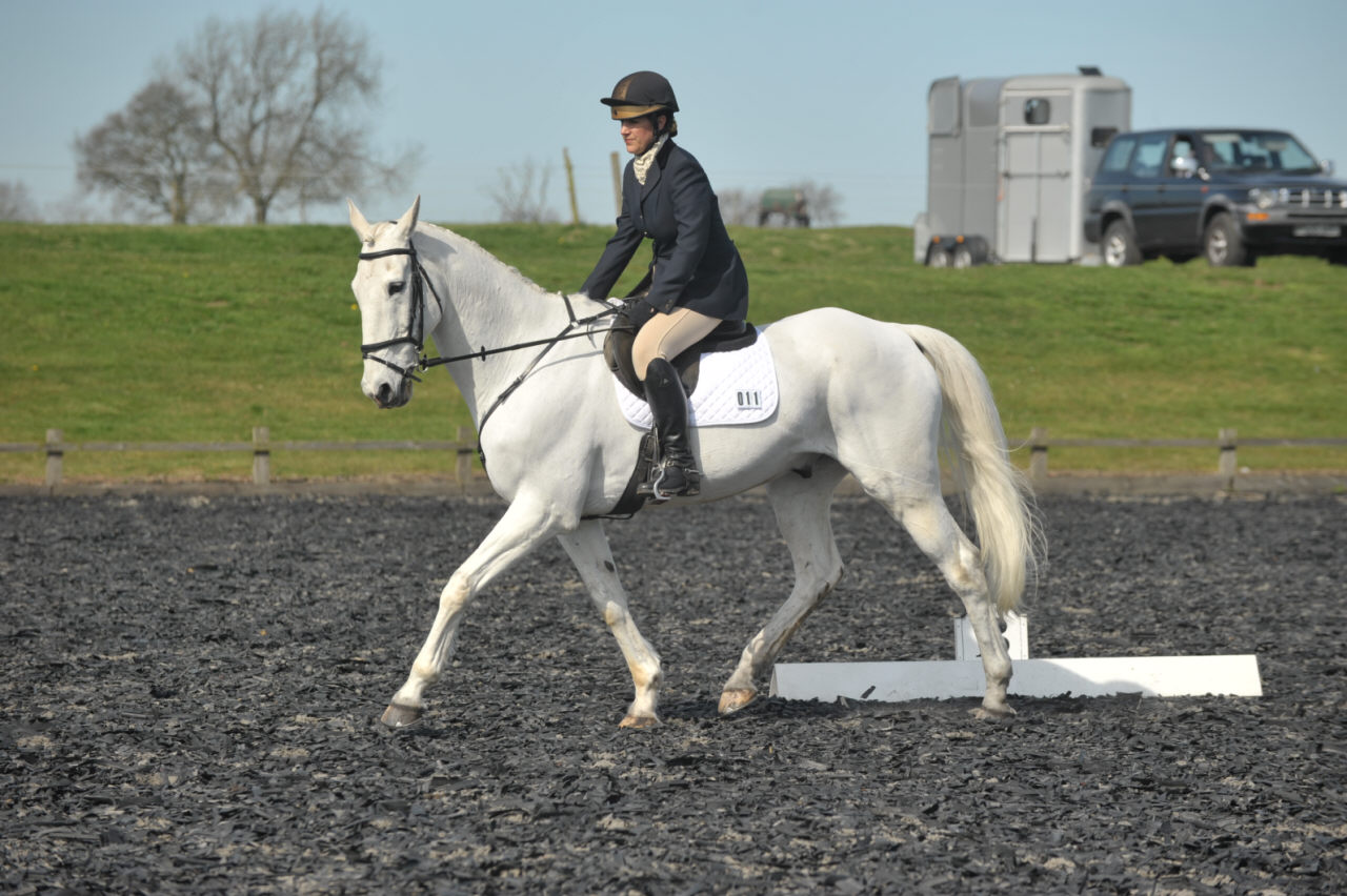 Dressage Photo from High Cross Equestrian Centre