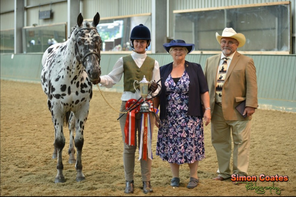 Appaloosa  UK National Breed Show 2014 Photos