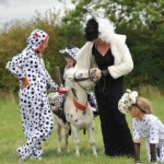 Lapworth Horse Show