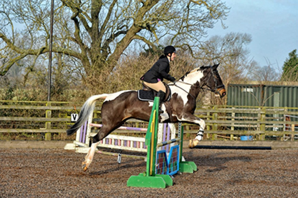 Hartshill Riding Club January