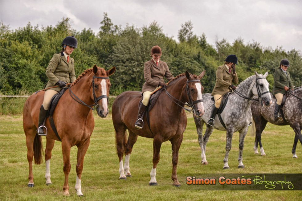 Midland Irish Draught Horse Show 2014