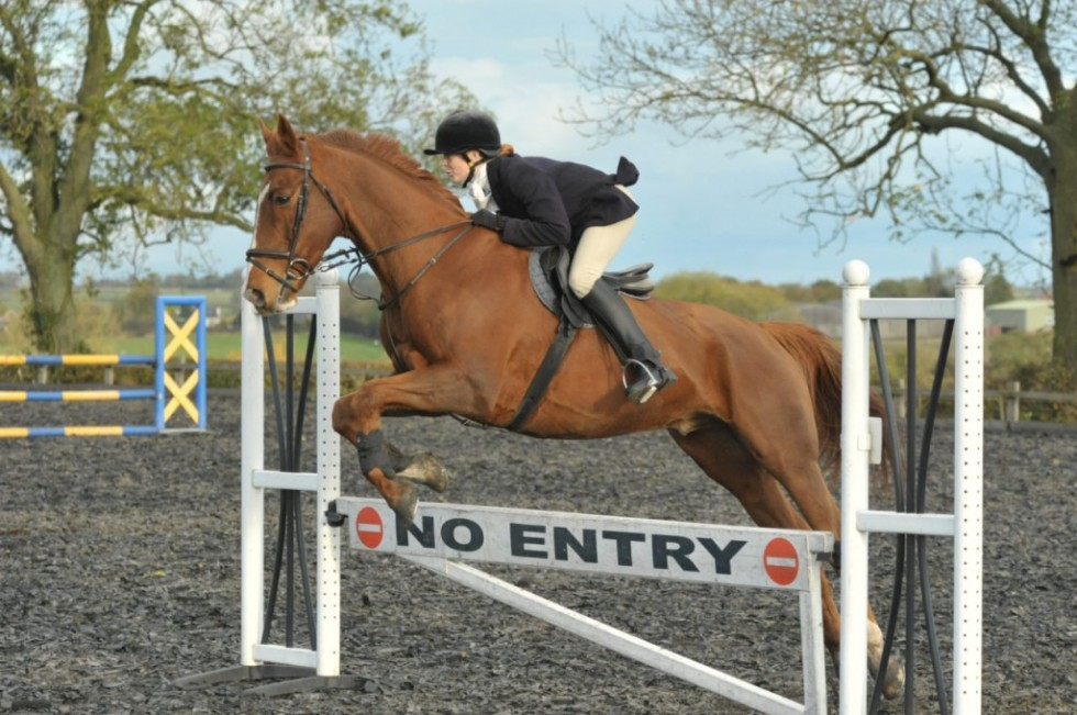 Show jumping photos from High Cross