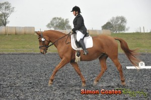 Dressage photography at High Cross Equestrian