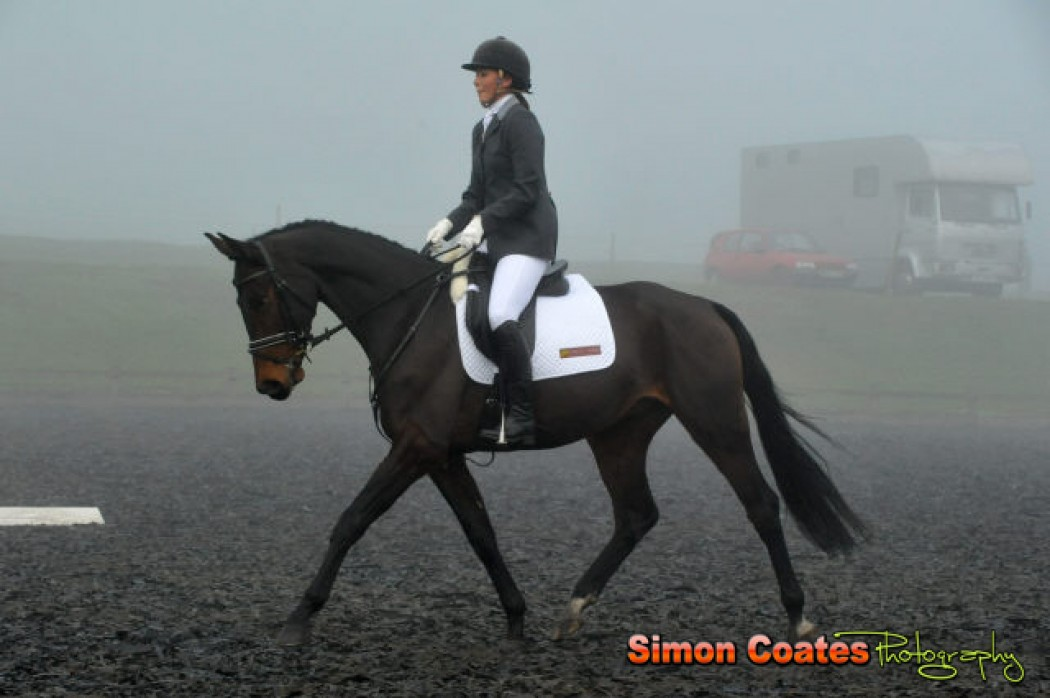 High Cross Dressage – 20 November