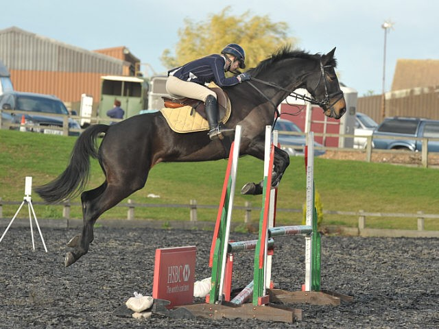 Show Jumping at High Cross Equestrian- 27 November