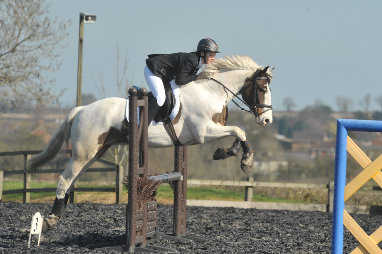 Show jumping photo from a sunny High Cross Equestrian Centre