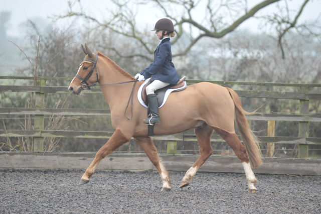Dressage photo from Hartshill RC