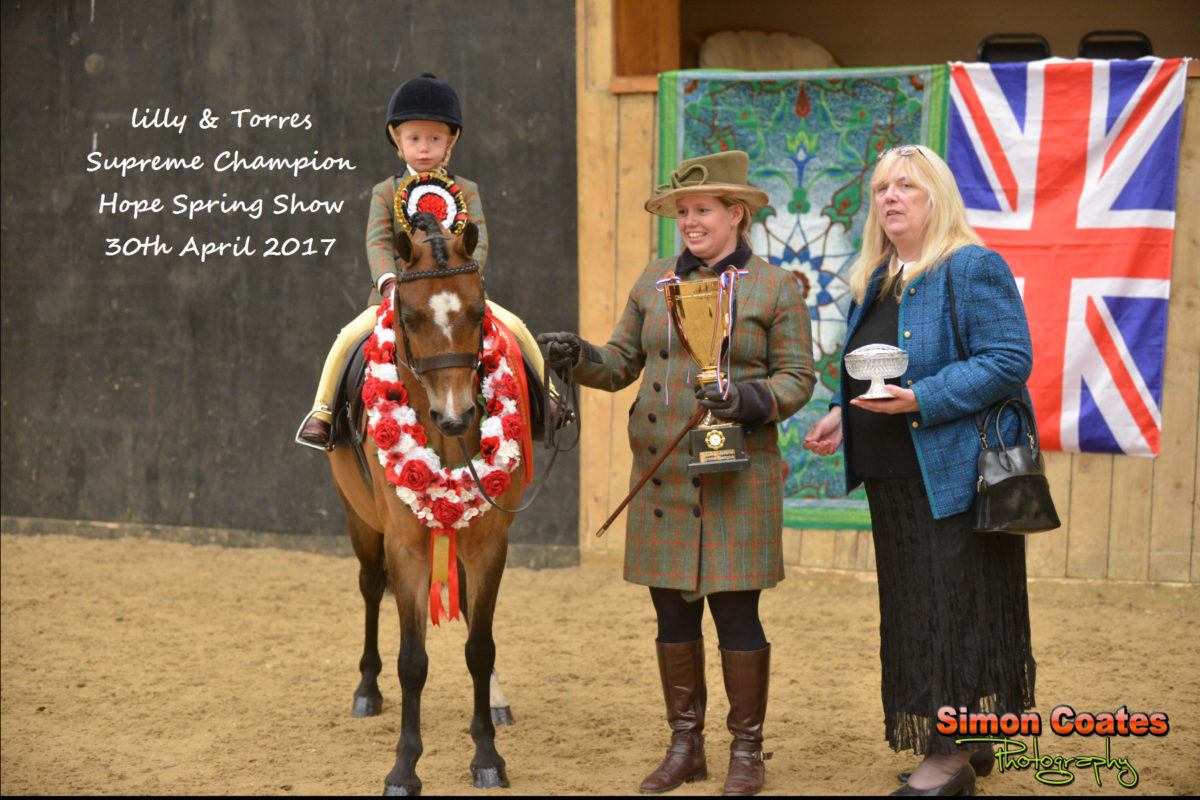 Equestrian Event Photography