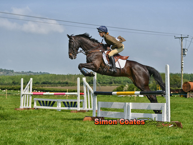 Showjumping photograph from the Napton Show