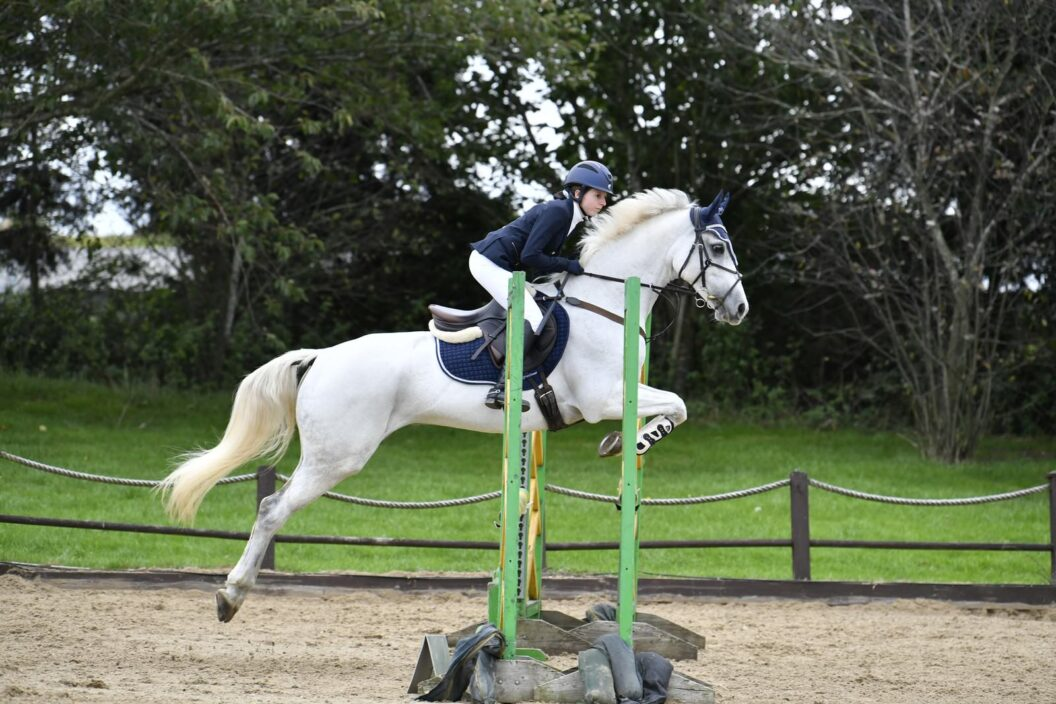 Horse jumping a fence